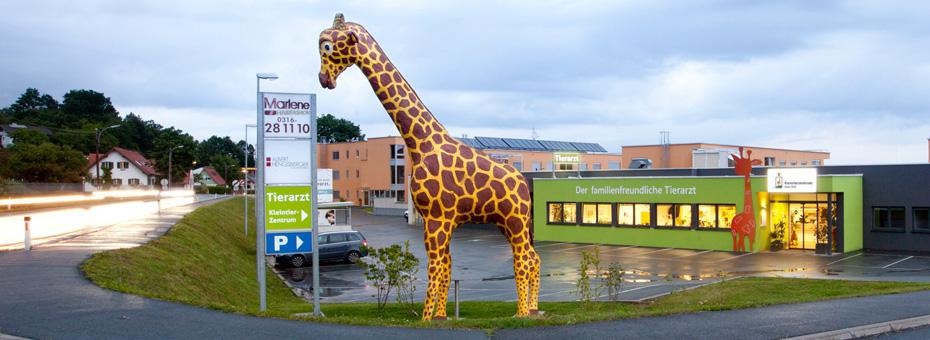 Gismo, die lebensgroße Giraffe des familienfreundlichen Tierarztes - Kleintierzentrum Graz Süd