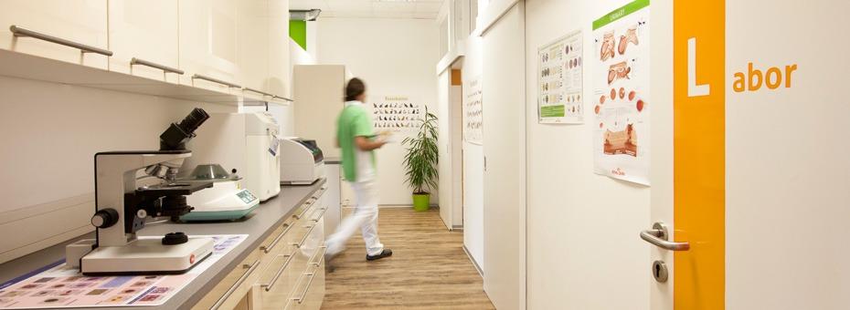 Das Kleintierzentrum verfügt über ein eigenes Labor und zwei Operationsräume
