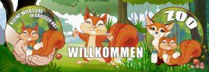 Verein Kleine Wildtiere in großer Not