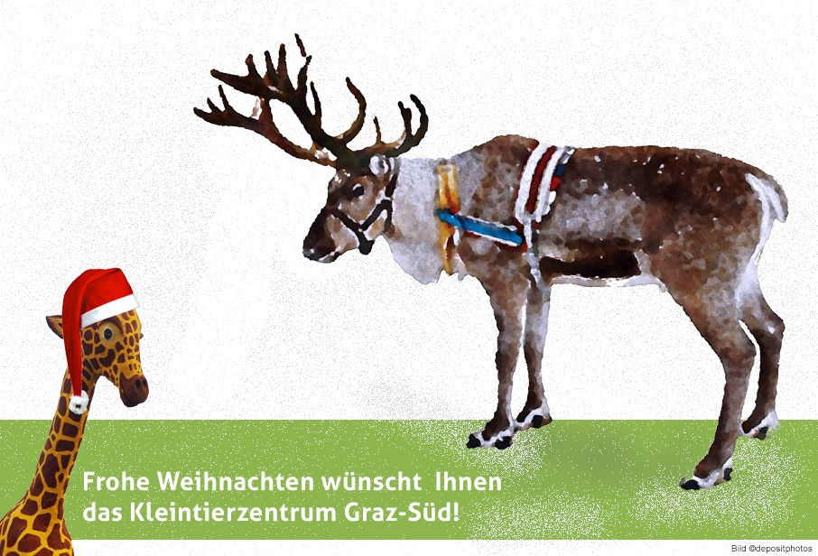 Weihnachtsgrüße mit gemaltem Rentier plus Gismo