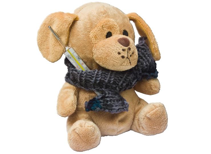 kranker Teddybär